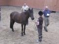 Jenni ja Roope eläinlääkärintarkastuksessa